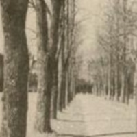 Spire_1951_14_3.jpg
